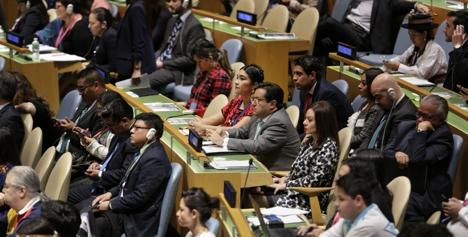The annual session of the UN Permanent Forum on Indigenous Issues. (Photo by UN Women)