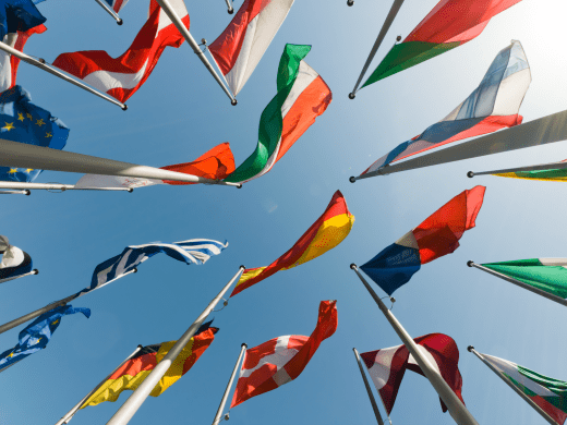 Flags of G20 countries (Shutterstock)
