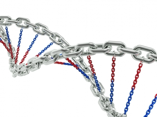 3D rendering of DNA helix made of shiny metal chain isolated on white background