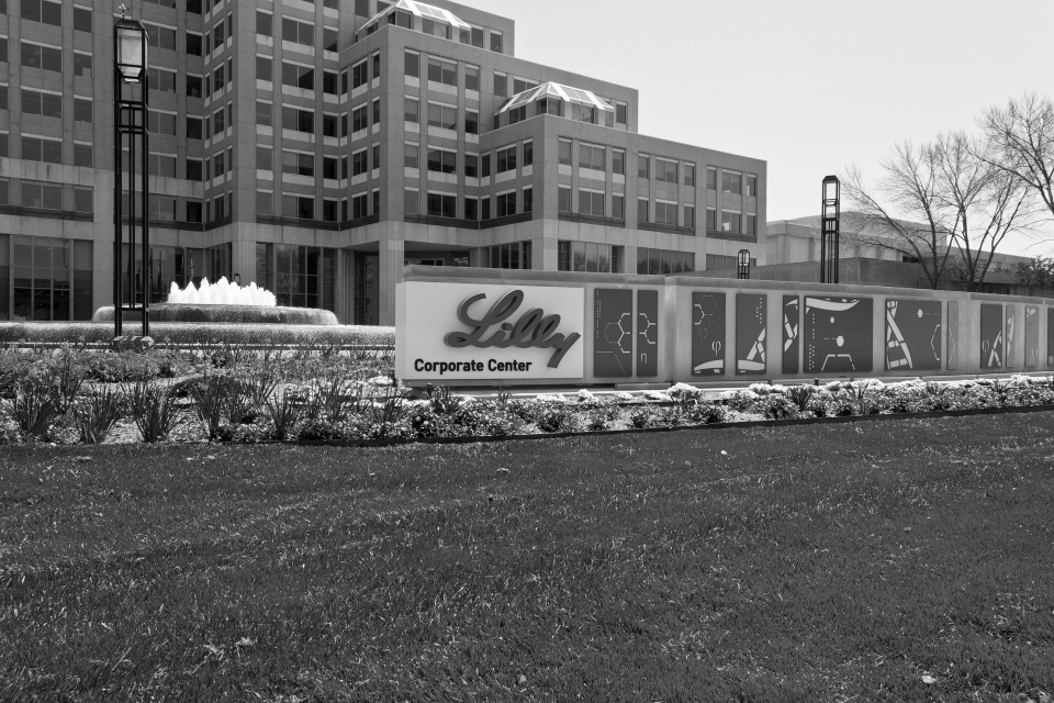 Eli Lilly's use of NAFTA's investor-state dispute resolution process in respect of its patents is emblematic of the new construction of IP as an investment. (Photo: Jonathan Weiss / Shutterstock.com)