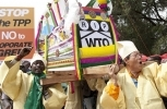 South Korean and Kenyan farmers shout slogans as they carry a coffin representing the WTO during a demonstration in Nairobi, Kenya on Dec. 17, 2015. (AP Photo/Sayyid Azim)
