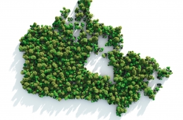 Image of Canada with trees
