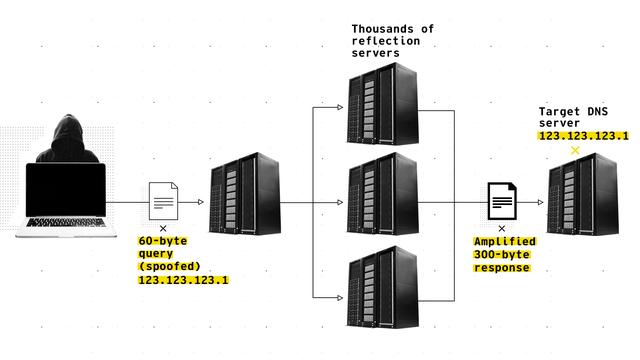CIGI-DNS-graphic.png